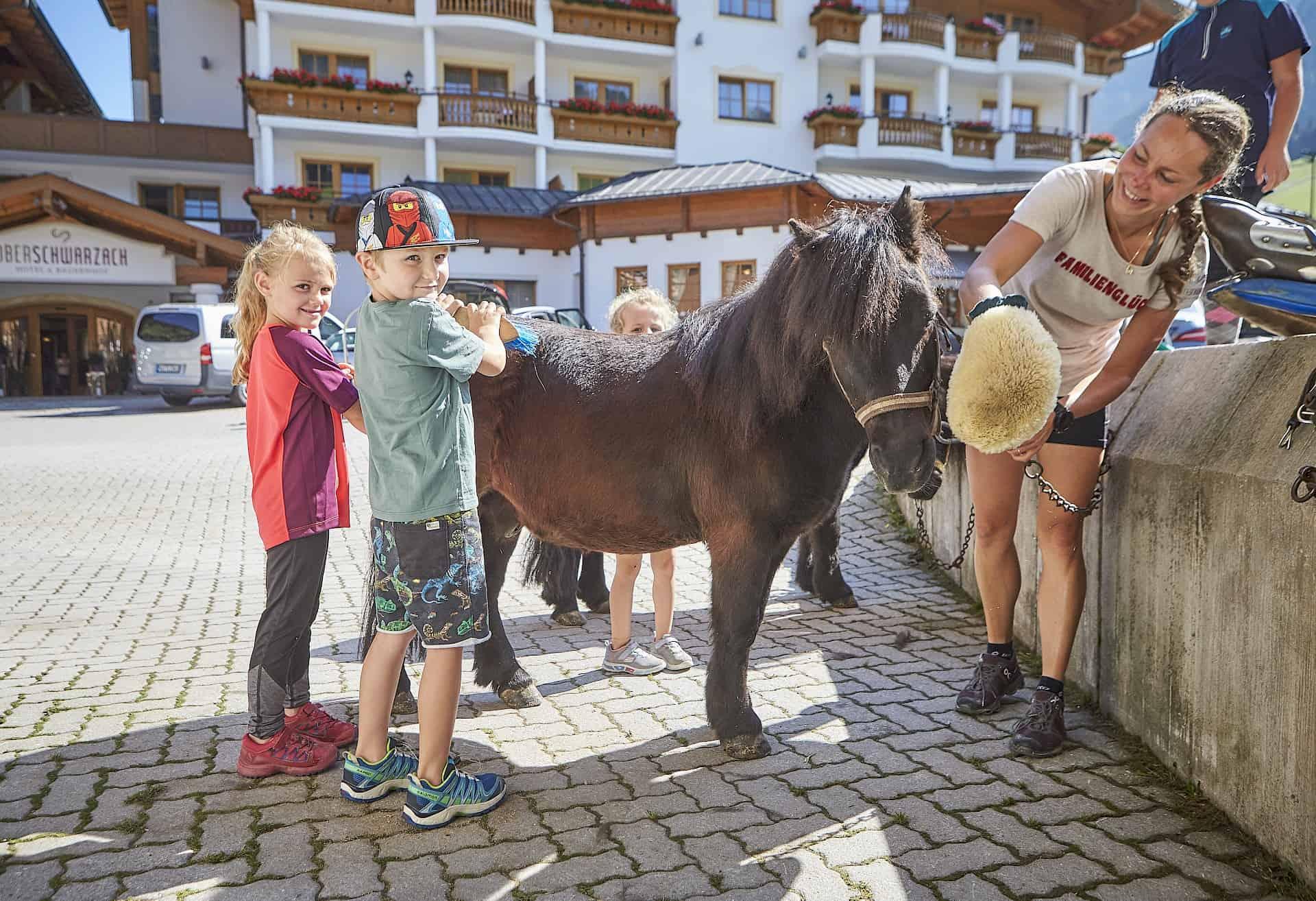 Horse weeks May-July