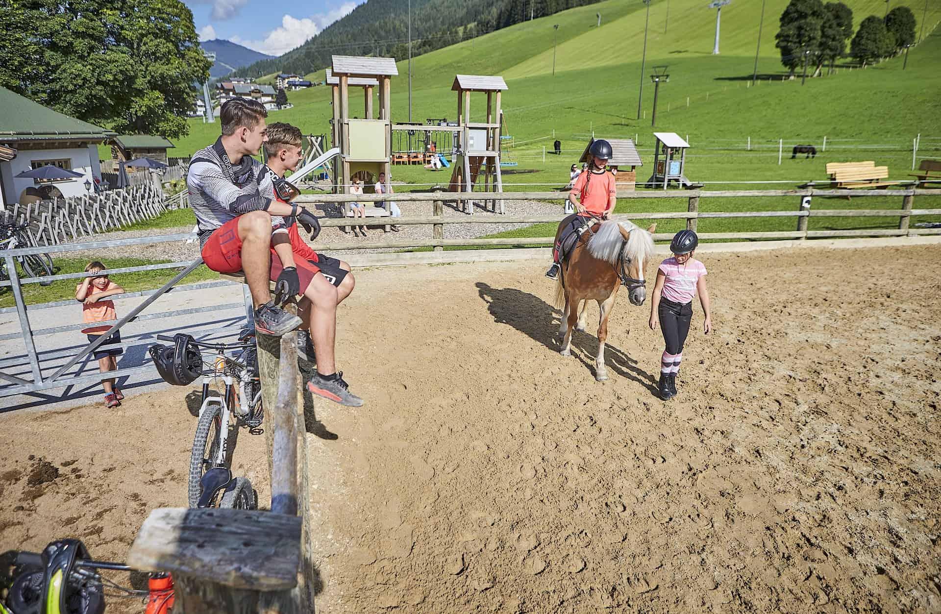 Horse weeks Jul–Aug